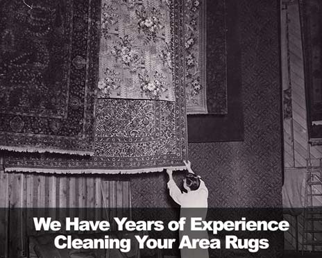 rugs-w-text